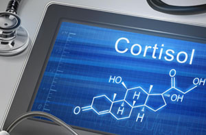 Cortisol Harding Medical Institute