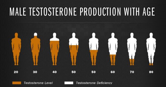 Testosterone Imbalance Harding Medical Institute